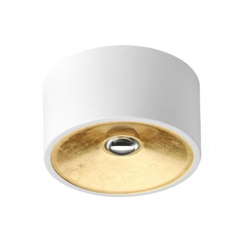 3892/1C ODL20 белый с золотом Потолочной накладной светильник GU10 1*50W 220V GLASGOW